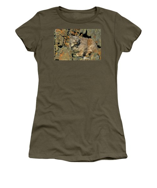 Women's T-Shirt (Junior Cut) featuring the photograph Canadian Lynx On Lichen-covered Cliff Endangered Species by Dave Welling