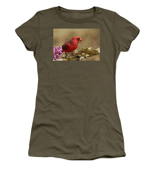 Cardinal In Spring Women's T-Shirt