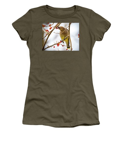 Cedar Waxwing Feeding  Women's T-Shirt