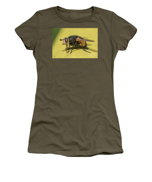 Close Up - Tachinid Fly - Nowickia Ferox Women's T-Shirt (Junior Cut) by Jivko Nakev