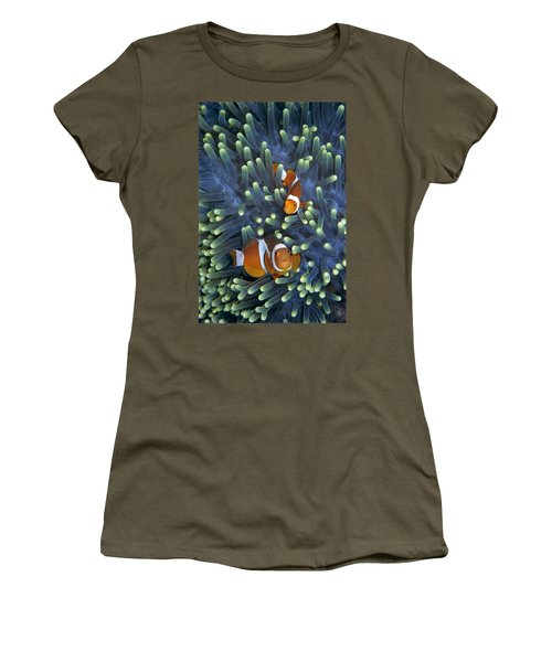 Clown Anemonefish Amphiprion Ocellaris Women's T-Shirt