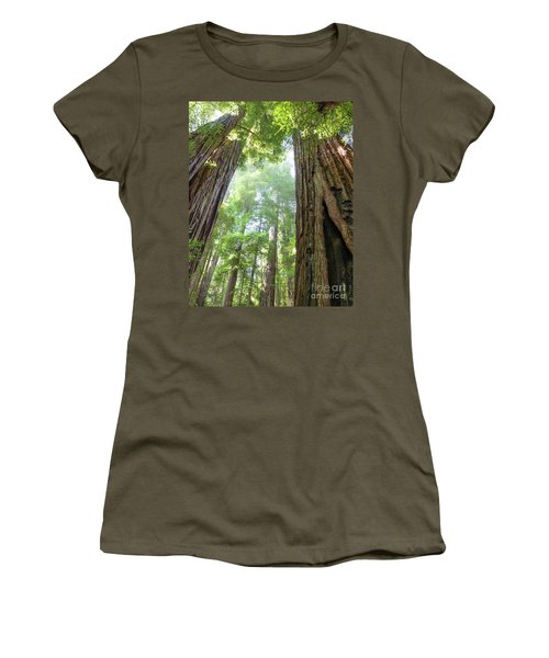 Coastal Redwoods  Women's T-Shirt