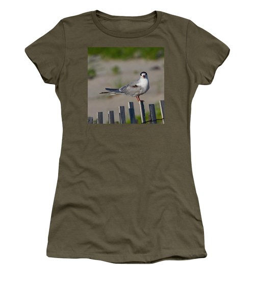 Common Tern Women's T-Shirt (Athletic Fit)