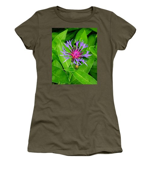 Centaurea Montana Women's T-Shirt