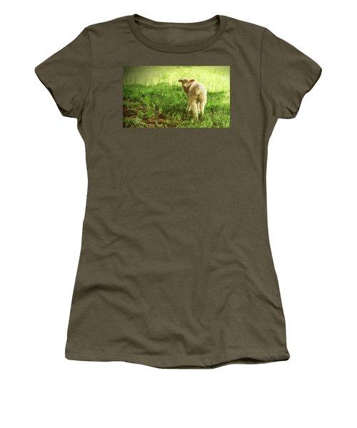 Cotswold Sheep Women's T-Shirt