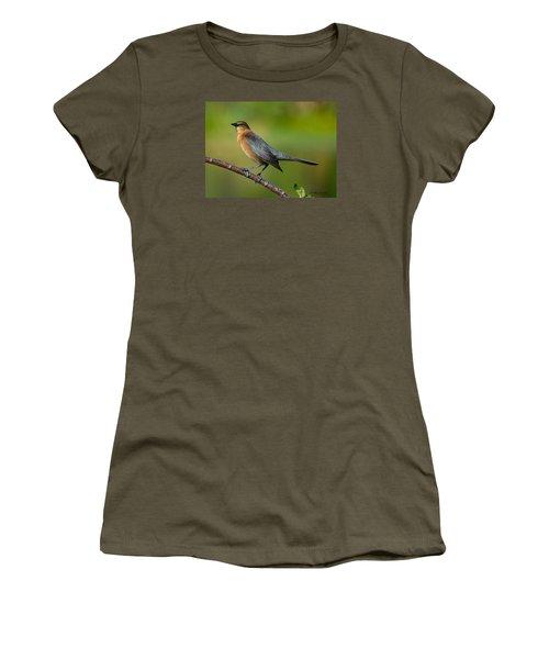 Cowbird Women's T-Shirt