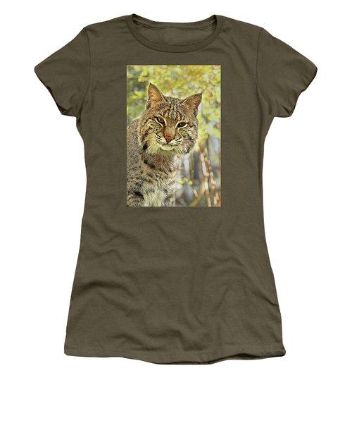 Women's T-Shirt (Junior Cut) featuring the photograph Curiosity The Bobcat by Jessica Brawley