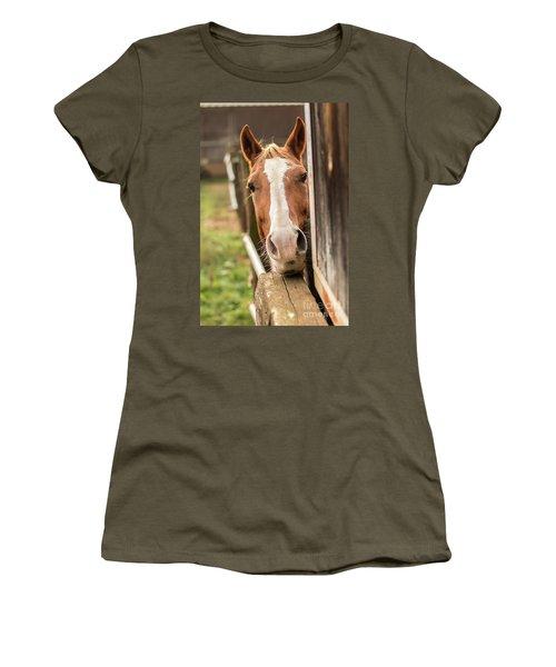 Curious Horse Women's T-Shirt