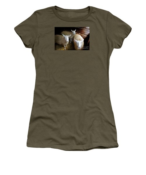 Curious Sheep Women's T-Shirt (Junior Cut) by Kevin Fortier