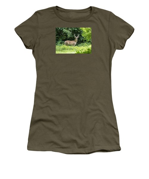 Eastern White Tail Deer Women's T-Shirt