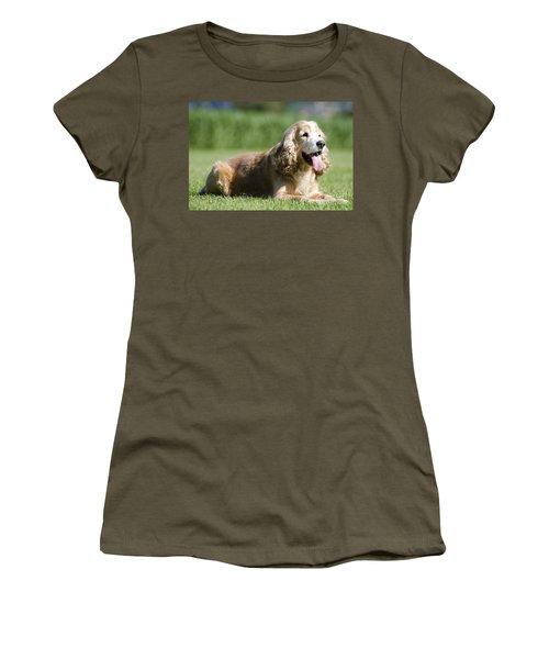 Dog Lying Down On The Green Grass Women's T-Shirt