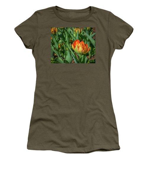 Double Multicolor Tulips Women's T-Shirt