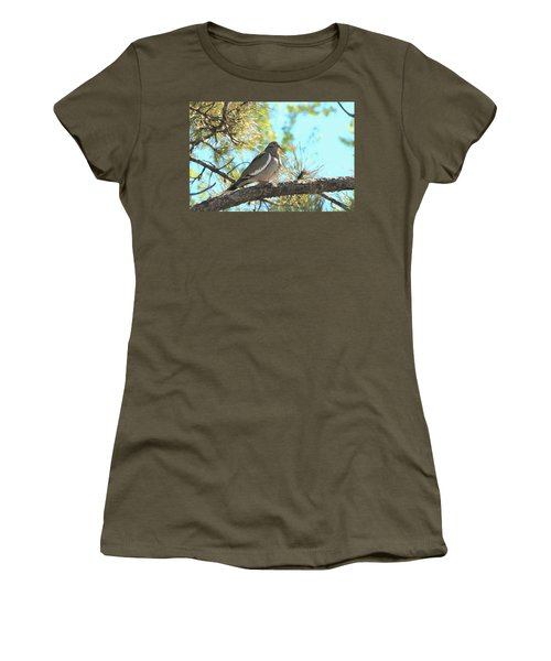 Dove In Pine Tree Women's T-Shirt