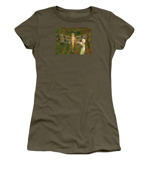 Painted Skimmer Dragonfly Women's T-Shirt (Junior Cut) by Phyllis Beiser