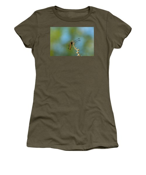 Dragonfly Wings Women's T-Shirt