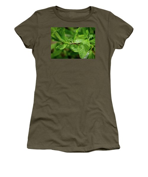 Droplets On Spring Leaves Women's T-Shirt