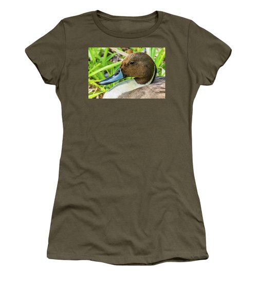 Women's T-Shirt (Athletic Fit) featuring the photograph Male Northern Pintail In Key West by Bob Slitzan