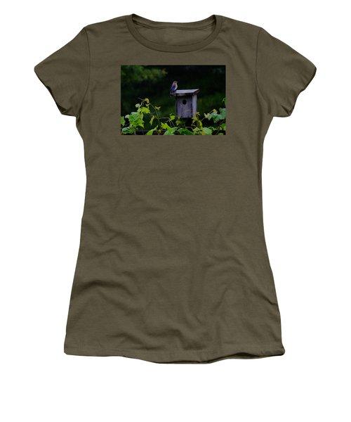 Eastern Bluebird In The Rain Women's T-Shirt