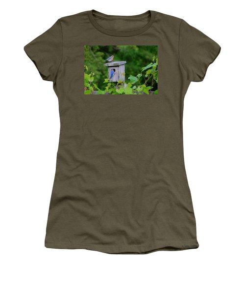 Eastern Bluebird Pair Women's T-Shirt