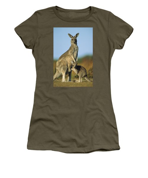 Eastern Grey Kangaroo And Her Joey Women's T-Shirt
