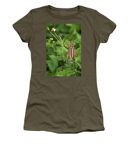 Eastern Lubber Grasshopper  Women's T-Shirt (Junior Cut) by Saija  Lehtonen