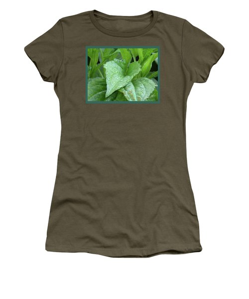 Echinacea After The Rain I Women's T-Shirt (Athletic Fit)