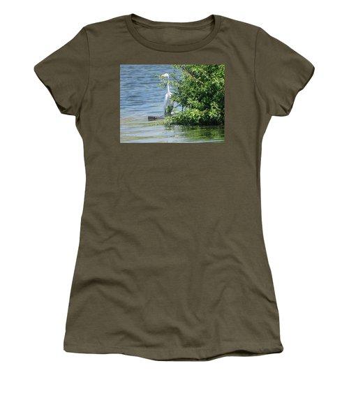 Great Egret In The Marsh Women's T-Shirt