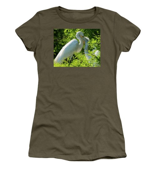 Egrets At Feeding Time Women's T-Shirt