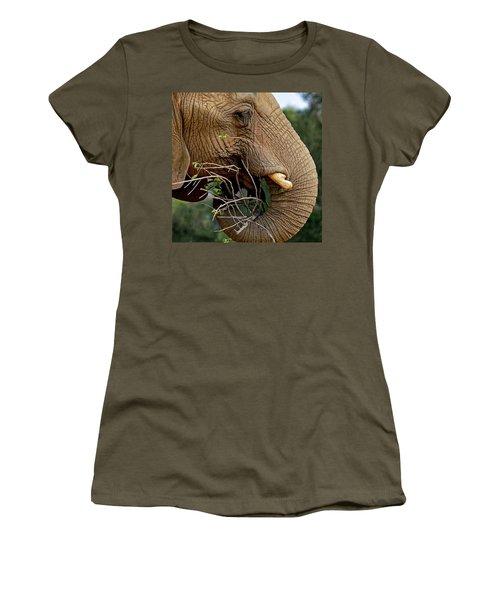 Elephant Curl Women's T-Shirt