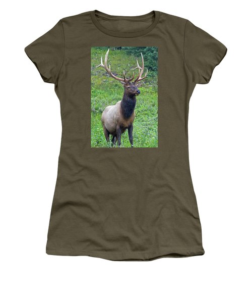 Women's T-Shirt (Athletic Fit) featuring the photograph Elk 5 by Gary Lengyel