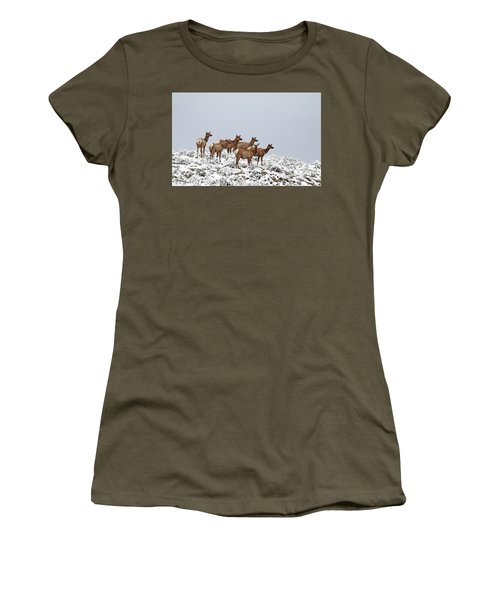 Elk Cows On The Alert In The Tetons Women's T-Shirt