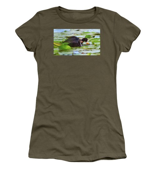 Eurasian Or Common Coot, Fulicula Atra, Duck And Duckling Women's T-Shirt (Junior Cut) by Elenarts - Elena Duvernay photo
