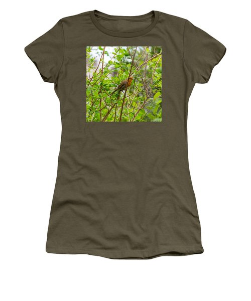 European Robin Women's T-Shirt
