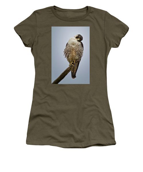 Falcon With Cocked Head Women's T-Shirt (Athletic Fit)