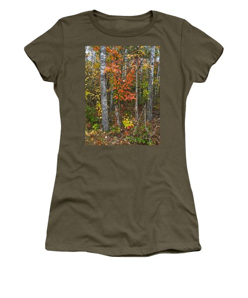 Fall Color At Gladwin 4543 Women's T-Shirt