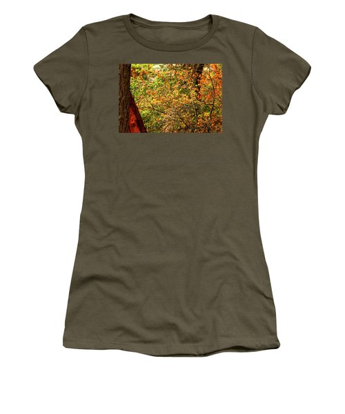 Fall Colors Women's T-Shirt