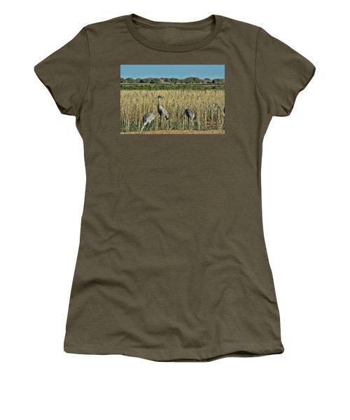 Feeding Greater Sandhill Cranes Women's T-Shirt (Junior Cut) by Daniel Hebard