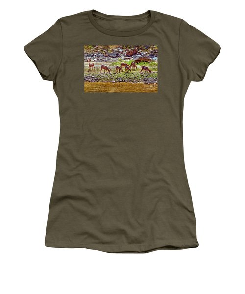 Feeding Mountain Sheep Women's T-Shirt (Junior Cut) by Robert Bales