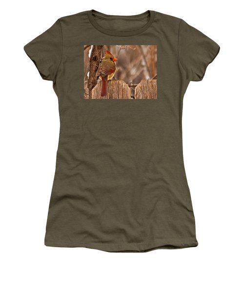 Female Cardinal On The Fence Women's T-Shirt (Athletic Fit)