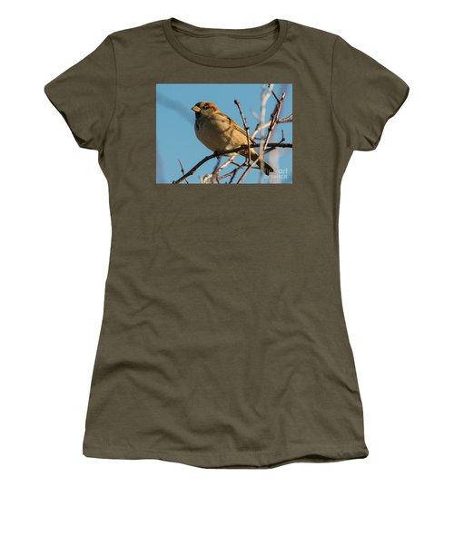 Female House Sparrow Women's T-Shirt (Junior Cut) by Mike Dawson