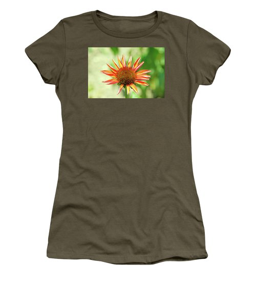 Women's T-Shirt (Athletic Fit) featuring the photograph Fibonacci by David Chandler