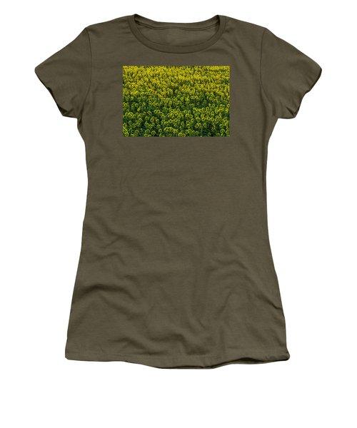 Field Of Sunflowers Women's T-Shirt