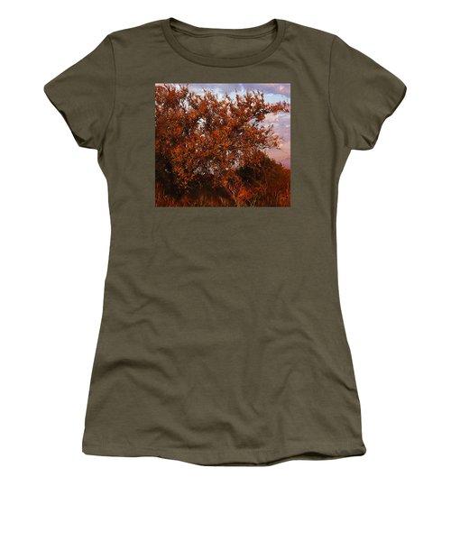 Fiery Elm Tree  Women's T-Shirt