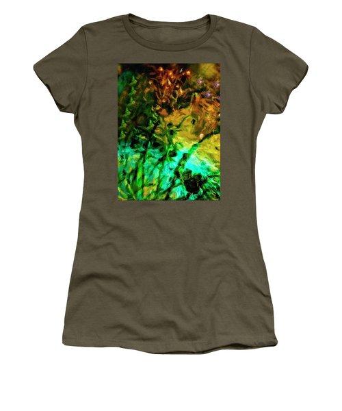 Fireworks 14 Women's T-Shirt
