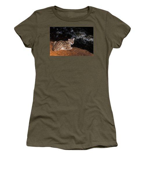 Fishing In The Stream Women's T-Shirt (Junior Cut) by Alex Lapidus