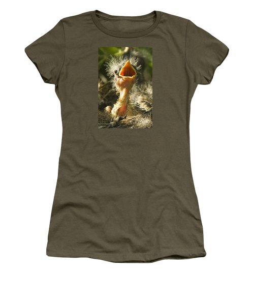 Fledgling Yellow Warbler Women's T-Shirt