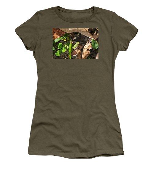 Froggy  Women's T-Shirt