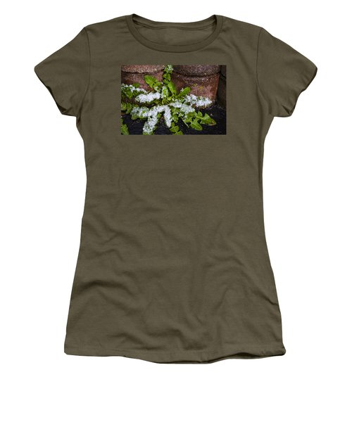 Frosted Dandelion Leaves Women's T-Shirt (Junior Cut) by Deborah Smolinske
