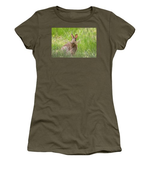 Gathering Rabbit Women's T-Shirt (Junior Cut) by Terry DeLuco