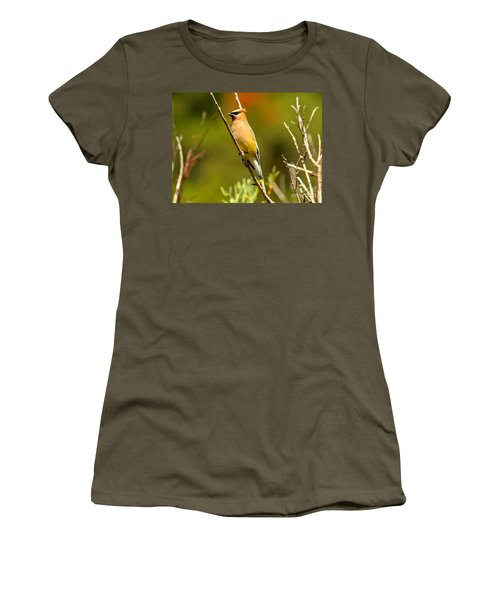 Glacier Cedar Waxwing Women's T-Shirt (Athletic Fit)